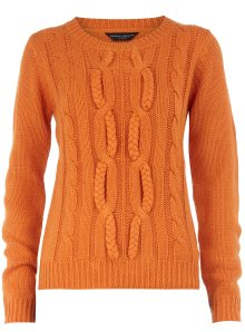Orange Cable Knit Sweater Dorothy Perkins